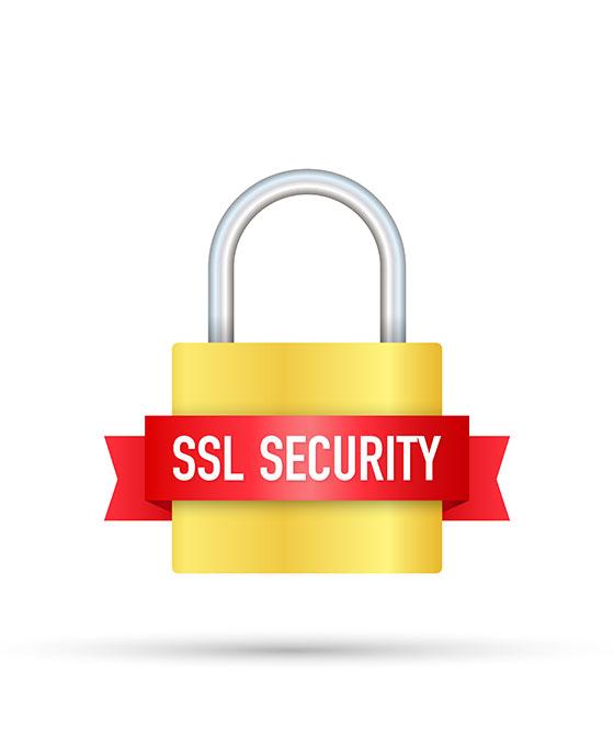 SSL Certificate, Rajkot, India